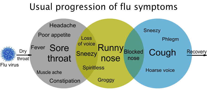 Usual flow of flu symptoms