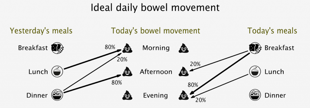 Ideal daily bowel movement routine