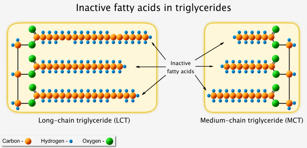 Inactive fatty acids in triglycerides